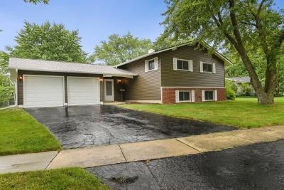 Woodridge Single Family Home For Sale: 6535 Halsey Drive