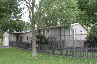 McHenry Single Family Home For Sale: 714 West Wood Street East