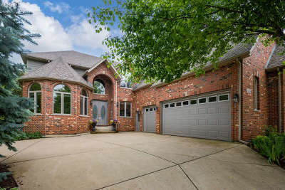 Naperville Single Family Home For Sale: 3528 Scottsdale Circle