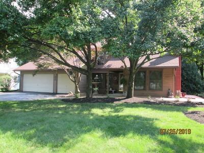 Minooka, Channahon Single Family Home For Sale: 411 San Carlos Road