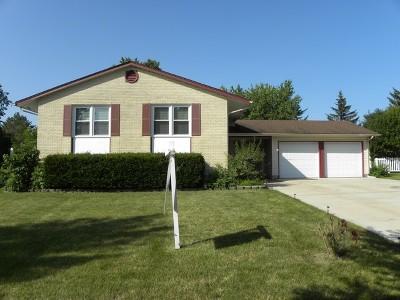 Elk Grove Village Single Family Home For Sale: 1589 Oregon Trail