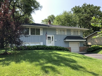 Naperville Single Family Home For Sale: 230 Elmwood Drive