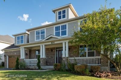 Oswego Single Family Home New: 804 Georgetown Drive