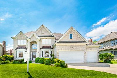 Plainfield Single Family Home For Sale: 11642 Millennium Parkway