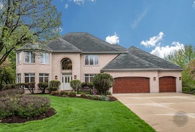 Naperville Single Family Home For Sale: 723 Colorado Court