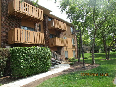 Roselle Condo/Townhouse For Sale: 718 Rodenburg Road #207
