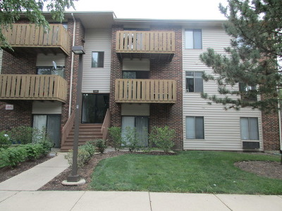 Roselle Condo/Townhouse For Sale: 720 Prescott Drive #111