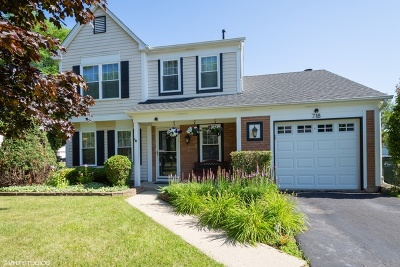 Vernon Hills Single Family Home For Sale: 718 Cherry Valley Road