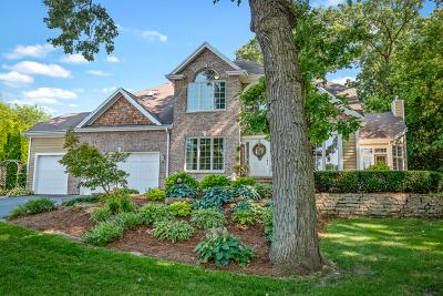 Elburn Single Family Home For Sale: 41w838 Bowgren Drive
