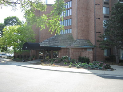 Schaumburg Condo/Townhouse For Sale: 75 Kristin Circle #419