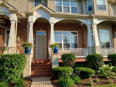 Lisle Condo/Townhouse For Sale: 6033 River Bend Drive