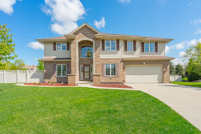 New Lenox Single Family Home For Sale: 710 Willowfield Court