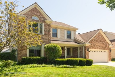 Buffalo Grove Single Family Home For Sale: 67 Dellmont Court