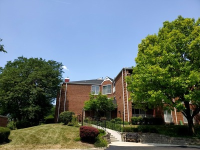 Elk Grove Village Condo/Townhouse For Sale: 805 Leicester Road #302