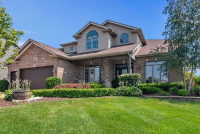 Plainfield Single Family Home For Sale: 15621 Portage Lane
