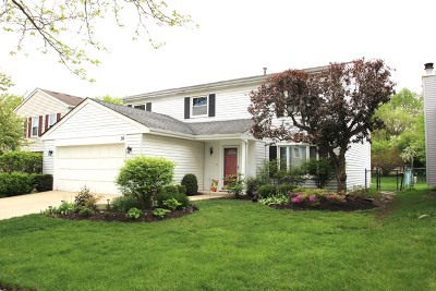 Vernon Hills Single Family Home For Sale: 36 Monterey Drive