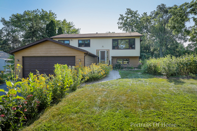 Downers Grove Single Family Home For Sale: 4633 Drendel Road