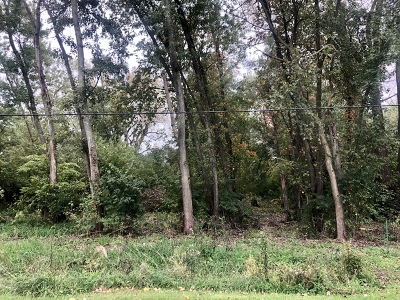 Braidwood Residential Lots & Land For Sale: 715 West Bergera Road