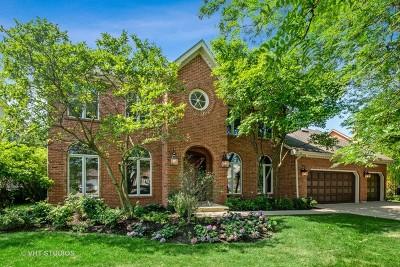 Naperville IL Single Family Home For Sale: $745,000
