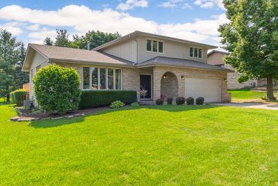 Homer Glen Single Family Home For Sale: 15337 Weather Vane Lane