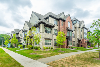 Libertyville Condo/Townhouse For Sale: 634 Parkside Court