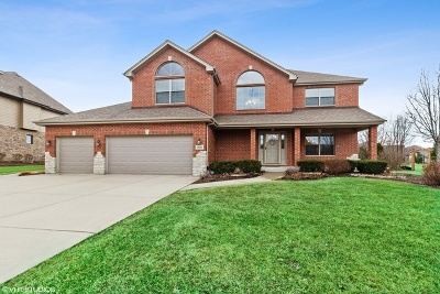 Mokena Single Family Home For Sale: 11881 Golden Gate Drive