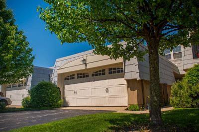 Elk Grove Village Condo/Townhouse For Sale: 675 Versailles Circle #D
