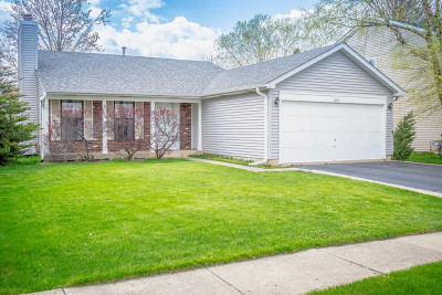 Elk Grove Village Single Family Home For Sale: 642 Cutter Lane