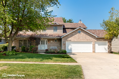 Grayslake Single Family Home For Sale: 436 Kerry Way