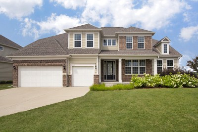 Buffalo Grove Single Family Home For Sale: 1982 Easthaven Drive