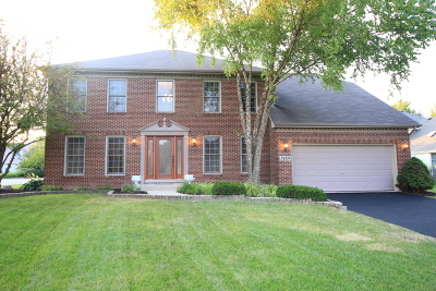 Plainfield Single Family Home For Sale: 24220 Eagle Chase Drive