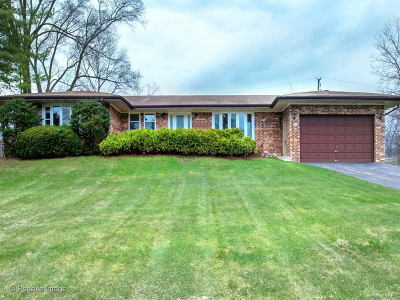 Palatine Single Family Home For Sale: 1208 North Doe Road