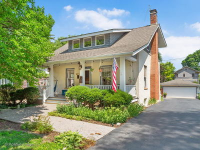 Downers Grove Single Family Home For Sale: 5201 Fairmount Avenue