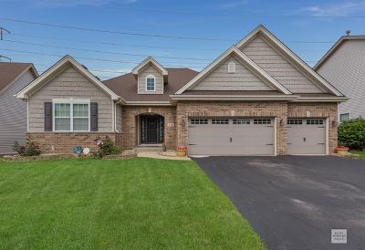 Romeoville Single Family Home For Sale: 736 North Sleepy Hollow Lane