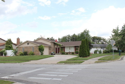 Orland Park Single Family Home For Sale: 15438 Orlan Brook Drive