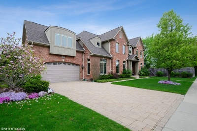 Morton Grove Single Family Home For Sale: 9306 National Avenue