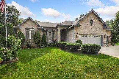 Du Page County Single Family Home For Sale: 32w651 Oak Lawn Farm Road