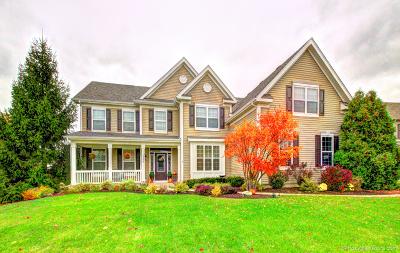 Aurora Single Family Home For Sale: 1246 Verona Ridge Drive
