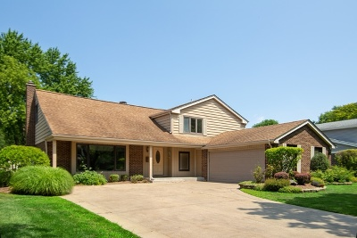 Palatine Single Family Home For Sale: 44 East Russet Way