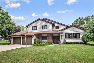 Homer Glen Single Family Home For Sale: 14342 Mallard Drive
