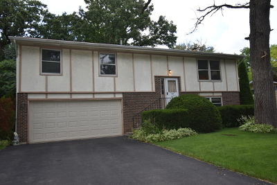 Lake Zurich Single Family Home For Sale: 1112 Betty Drive
