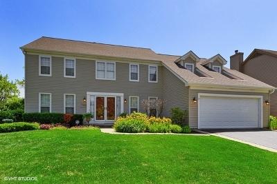 Mundelein Single Family Home For Sale: 200 Ambria Drive