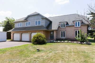 Hampshire Single Family Home For Sale: 44w301 McDonald Road