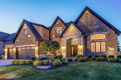 Orland Park Single Family Home For Sale: 11060 Deer Haven Lane