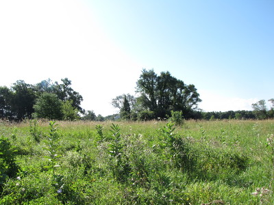 Morris Residential Lots & Land For Sale: Lot 1 Pine Bluff Road
