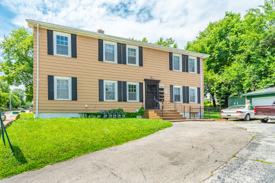 Joliet Multi Family Home For Sale: 605 Morgan Street