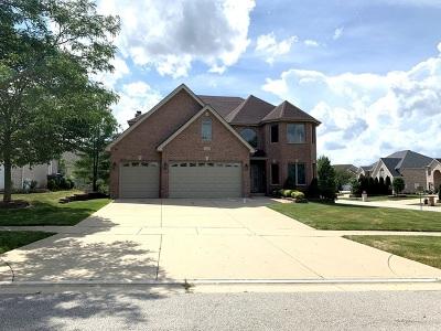 Roselle Single Family Home For Sale: 370 Jennifer Lane