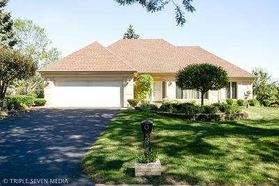 Burr Ridge Single Family Home For Sale: 8361 South Park Avenue