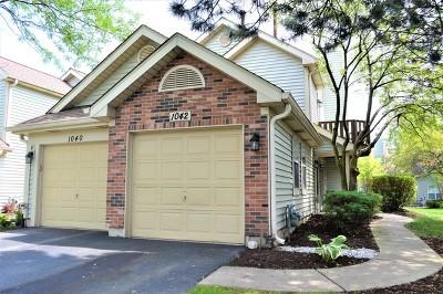 Carol Stream Condo/Townhouse For Sale: 1042 Rockport Drive