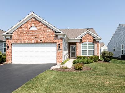 Mundelein Single Family Home Price Change: 3286 Hutchinson Lane